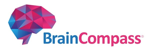 Stryfes - Braincompass